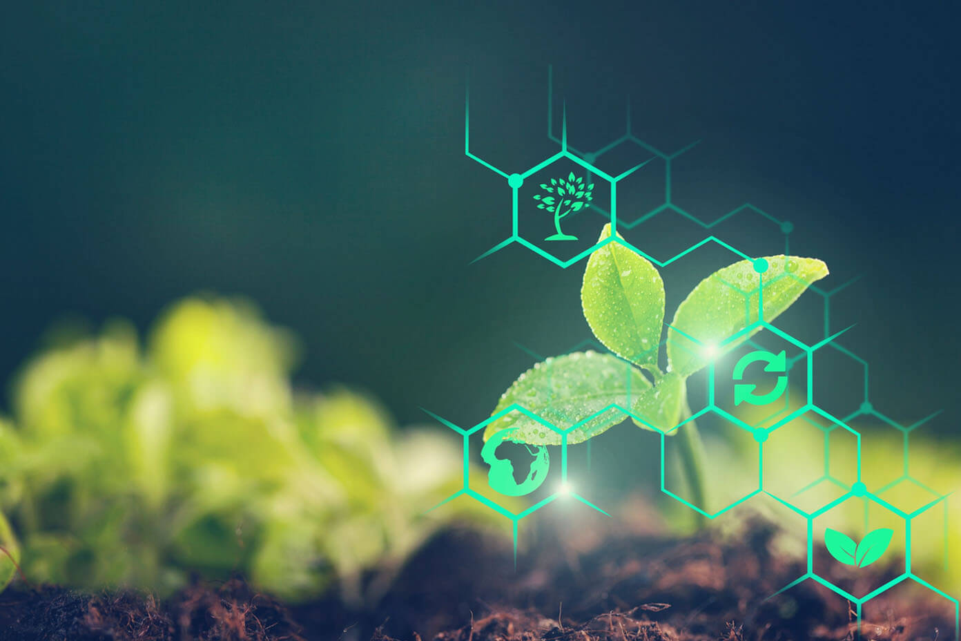 Agritech is strengthening the Agricultural Value chain After the Pandemic
